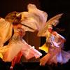 El Jameeles dance company